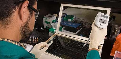 Laboratory testing of livestock specimen.