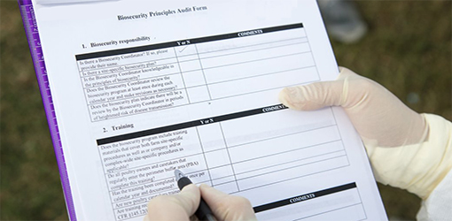 A biosecurity plan checklist.