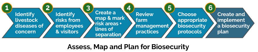 Assess, map and plan for livestock biosecurity