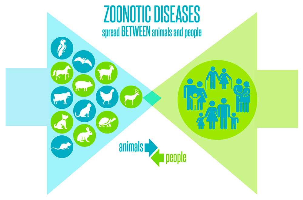 Zoonotic diseases